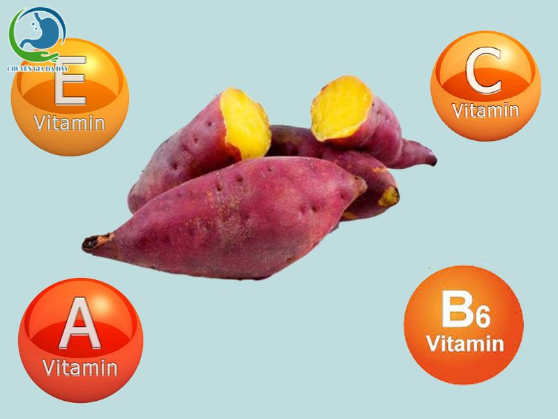 Các Vitamin có trong khoai lang